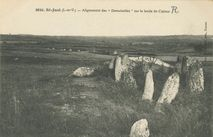 Alignements des ''Demoiselles'' sur le lande de Cojoux