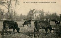Colonie Saint-Maurice |