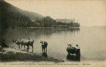 Lac du Bourget et l'Abbaye de Haute-Combe |