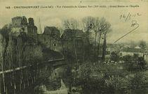 Vue d'ensemble du château fort (XIe siècle) - Grand donjon et chapelle |