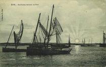 Sardiniers rentrant au Port |