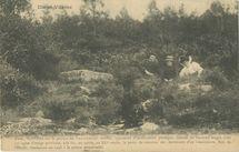 Forêt de Paimpont | Bailly