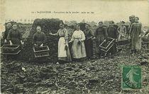 Extraction de la tourbe : mise en tas   Joubier J.-B.