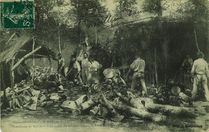 Une hutte de sabotiers dans la forêt de Camors |