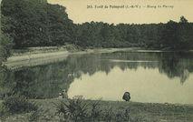 Forêt de Paimpont. Etang du Perray |