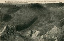 Forêt de Paimpont |