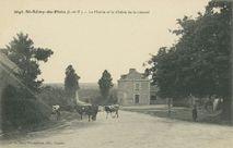 La Mairie et le chêne de la Liberté |