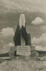 Monument élevé, par sa division, au Général Welvert tombé face à l'ennemi | Service CINEMA DE L'ARMEE