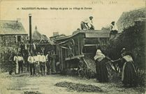 Battage du grain au village de Foveno |