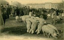 Marché aux Porcs  