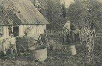 Fabrication du cidre |