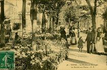 Le Boulevard Béranger |