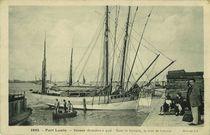 Bateaux thonniers à quai |