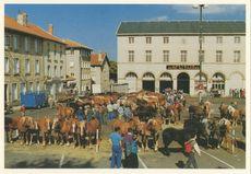 Place de la Victoire: La foire aux chevaux (03/10/1990) | Demeure V.