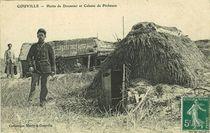 Gouville-sur-Mer | Marie