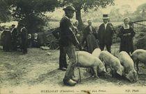 Marché aux Porcs |