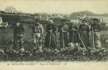 TREGASTEL-LE-DIBEN.- Types de Cultivateurs |