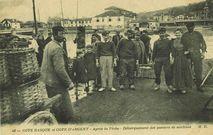 Après la pêche - Débarquement des paniers de sardines |