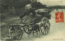 La Chanteuse de Complaintes Bretonnes à bord de son auto, deux chiens, pas de cylindre |