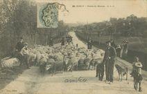 Route de Meaux | C.l.c.