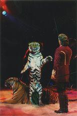 Cirque Knie - 2001 | Kervinio Yvon