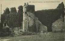 Les Ruines du Château de Dréors |