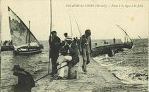 Pêche à la ligne à la Jetée |