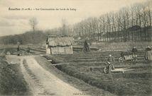 Les Cressonnières des bords du Loing | Labarre