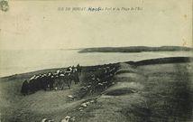 Le Port et la Plage de l'Est |