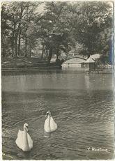 Vue sur le lac |