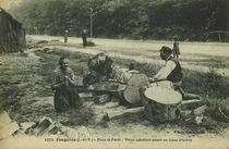 Fougères (I.-et-V.) - Dans la Forêt |
