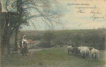 La gardeuse de moutons |