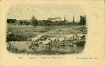 Vichy |