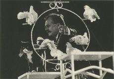 CIRQUE ACHILLE ZAVATTA - 1991 | Kervinio Yvon