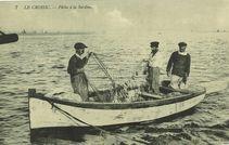 Pêche à la sardine |